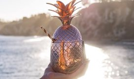 Thania_Peck_Absolut_Elyx_Copper_Pineapple_on_the_beach_2048x