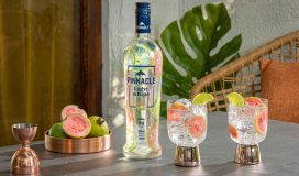 Pinnacle Light & Ripe Guava Lime sparkler